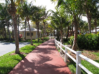 Pathway to the playground.