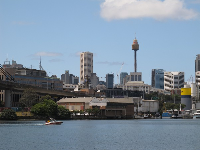 Sydney tower in the distance.