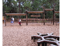 Large assortment of swings, plus geometric-shaped climber.