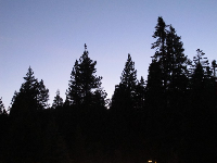 Tenaya Lodge at night- romantic.
