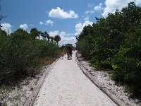 Path to gulf side of Big Hickory Island.