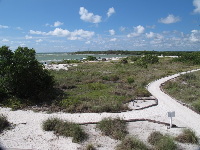White-sand paths on Big Hickory Island.
