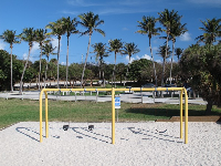 Swings over sand, and plenty of palms.