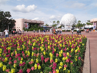 Multi-colored flowers and the Spaceship Earth geosphere.