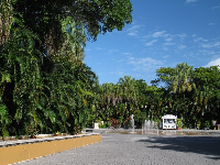 The interactive play fountain and abundance of tropical vegetation.