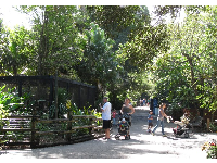 Families enjoy a sunny day at the zoo.