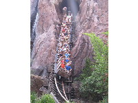 Riders scream in delight on Expedition Everest.