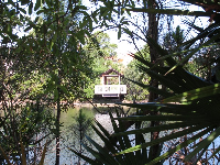 Looking across the water at a gazebo, in the forest at Abacoa.