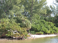 Kids playing in the water of the lagoon.