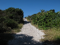 The sandy path that leads down to Ocean Dr from the gazebo at the end of the short hike.