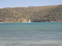 Sailboat across Pittwater.