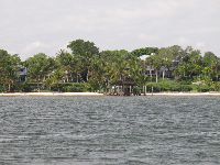 View of the shoreline.