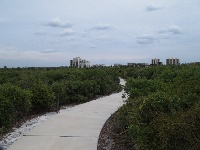 The trail, and high-rises on Jupiter Island in the background.