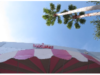 Pink awning and palms.