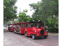 Trolley ride with narration about the history of St. Augustine.