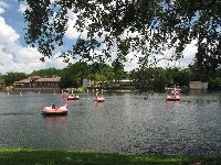 Flamingo paddle-boats.