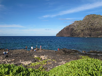 Fishermen at Makapuu Beach.