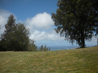 Grassy spot with view over the ocean.