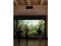 Visitors enjoy the springtime diorama.