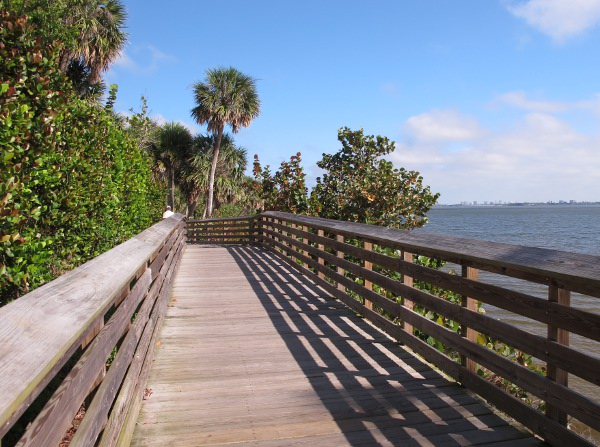 Loop Trail / Boardwalk, Indian Riverside Park, Stuart FL