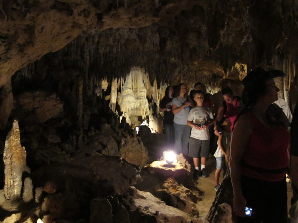 Florida Caverns State Park, Marianna, North Florida FL