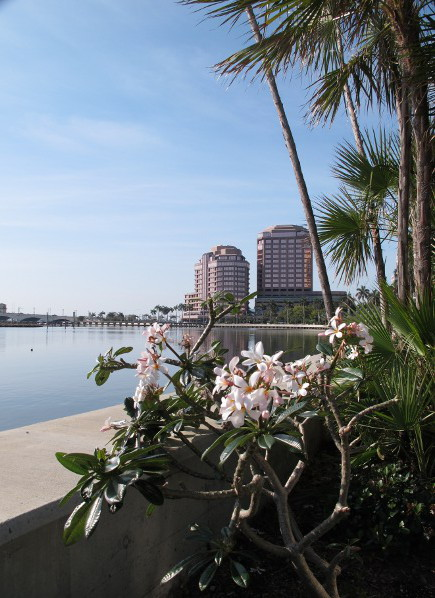 West Palm Beach Waterfront, Palm Beach FL