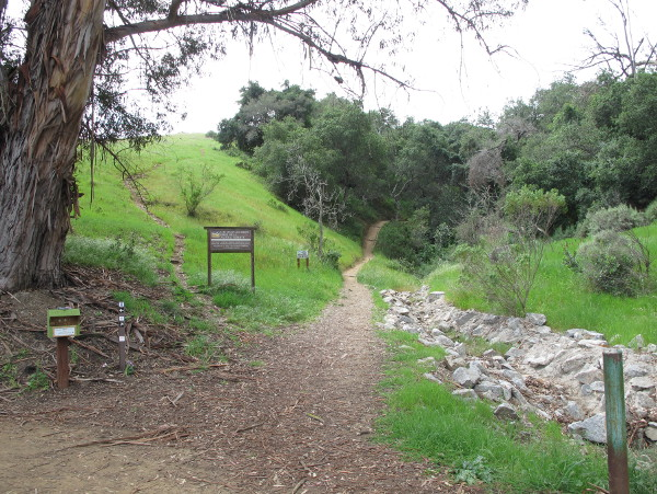 Irish Hills Walk and De Vaul Park, SLO, San Luis Obispo California