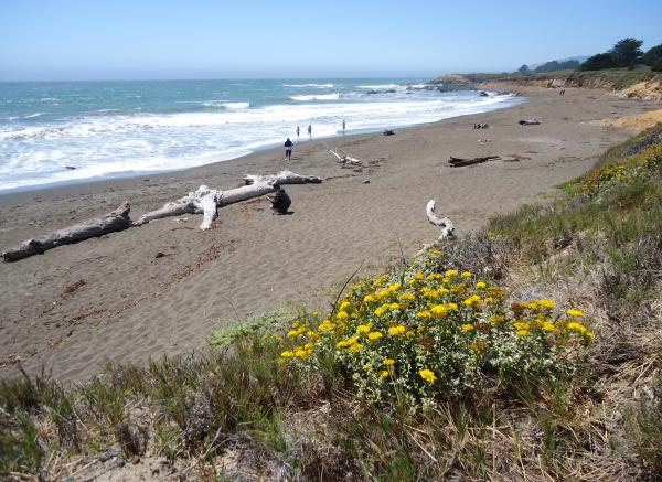 Moonstone Beach Boardwalk, Cambria, San Luis Obispo California