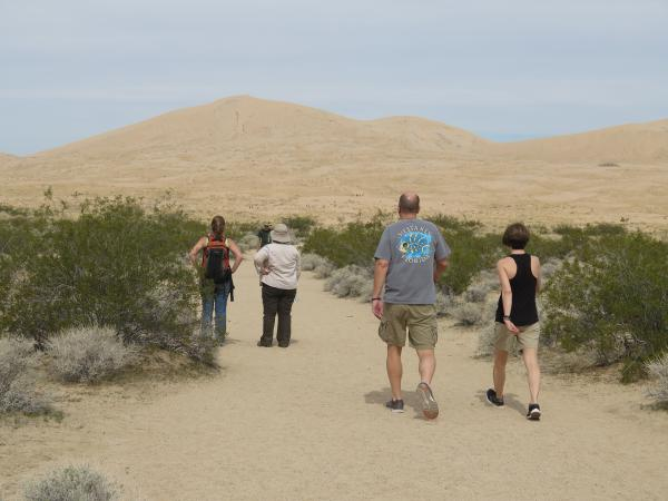 Kelso Dunes (4 hours from LA), Los Angeles California