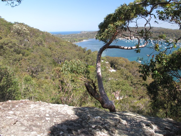 McKay Reserve Lookout, Sydney NSW