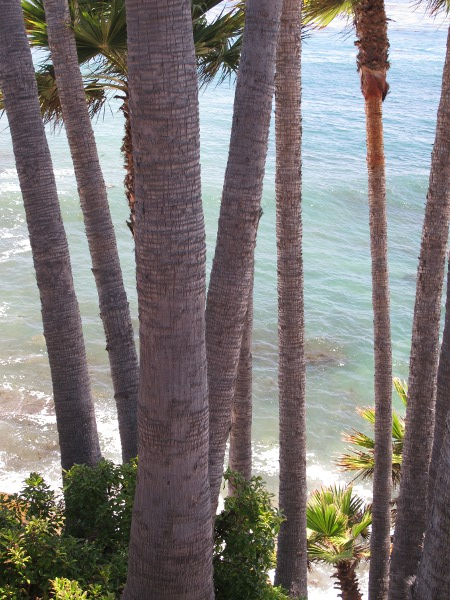 Heisler Park, Laguna Beach, Los Angeles California