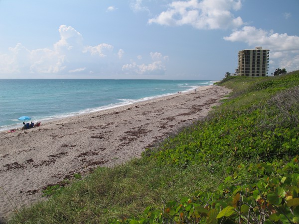 Coral Cove Beach, Jupiter Island, Palm Beach FL