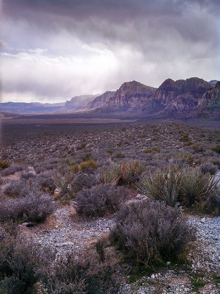 Red Rock Canyon, Las Vegas Nevada