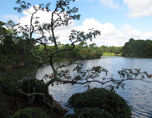 Morikami Museum and Japanese Gardens, Palm Beach FL