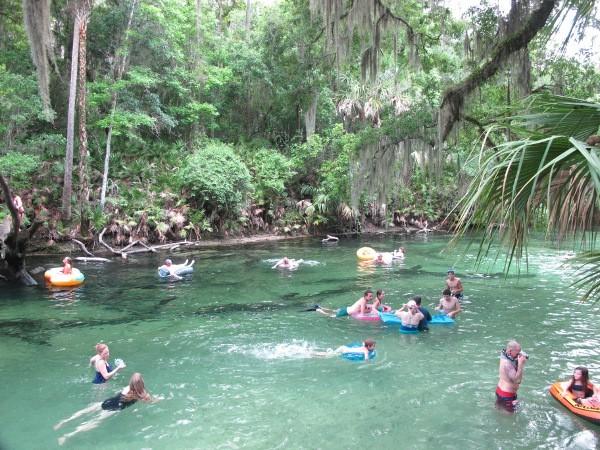 Florida Freshwater Springs Map.Freshwater Springs Lotsa Fun Maps