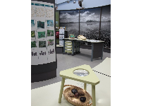 Display with items from nature to touch, alligator skull, and black and white photo mural on wall.