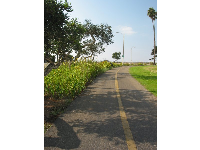The Andree Clark Bird Refuge bike path, as you face the ocean.