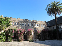 The courtyard and palms.