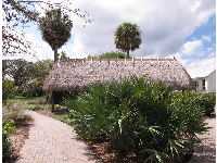 The Seminole Indian chickee hut.