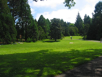 People laze in the sun on the gorgeous lawns of Strybing Arboretum in Golden Gate Park.