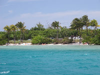 The gorgeous color of the water and the white sand, as seen from the Manatee Queen boat tour.