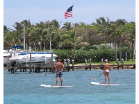 Paddle boarders abound!