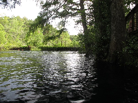 The blue hole swimming area.
