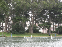 Miniature sailboats on Spreckels Lake.