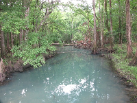 The run or creek that leads out from the spring to the Chipola River.