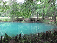 It is so pretty at Blue Hole Spring!