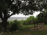 Bench with a beautiful view and bay breeze!