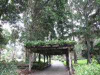 Vine-covered arbor.