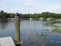 Dock on St. Johns River.