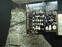Display of points, projectiles, beads, pins, and tools collected by a young boy named Bill Carson.